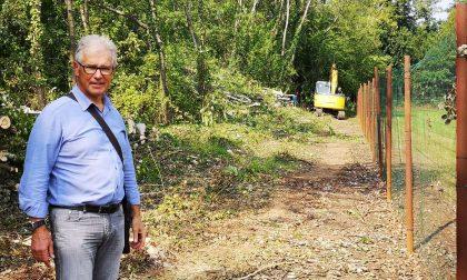 Cesano, sindaco e cittadini ripuliscono il Parco delle Groane