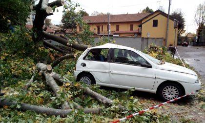 Tempesta perfetta di ottobre: alla Lombardia oltre 96 milioni di euro