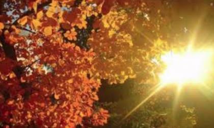 L'autunno è alle porte: le previsioni lo confermano