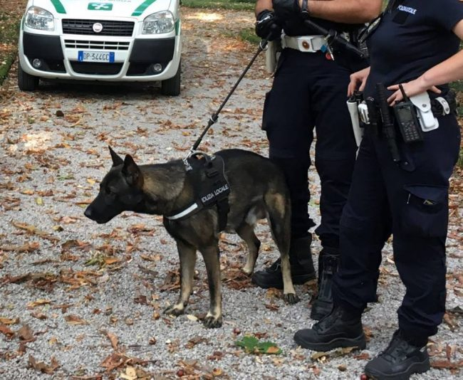 Monza, il fiuto di Narco colpisce ancora