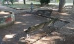 Diffida del Codacons per il degrado nel parco