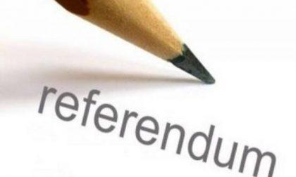 Referendum: alle 12 affluenza del 12,28 per cento