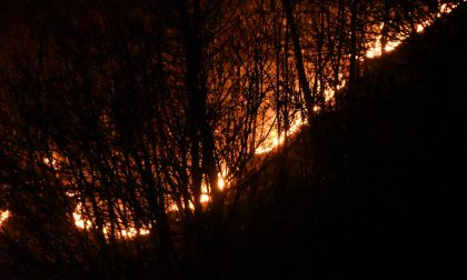 Da Regione il divieto di accensione di fuochi: è allerta incendi boschivi