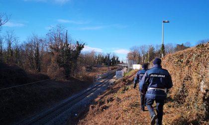 Parco delle Groane: nel 2019 sequestrati 12 chili di cocaina e 400mila euro