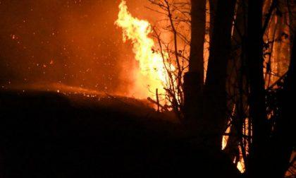 Allerta incendi boschivi, ecco la cartina delle zone più a rischio in Lombardia