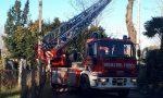 Incendio al Meredo, a fuoco un pollaio FOTO E VIDEO