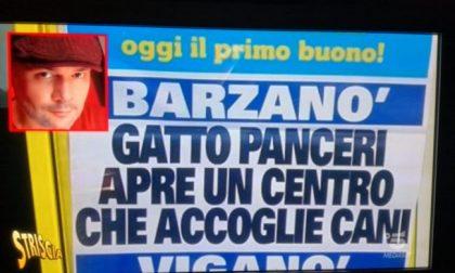 Gatto Panceri che accoglie i cani… finisce a Striscia la Notizia
