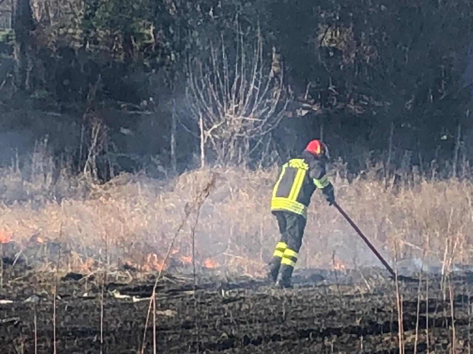 Incendio in via Lippi, Vigili del fuoco in azione
