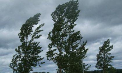 Torna il vento forte in Brianza: scatta il codice giallo della Protezione Civile