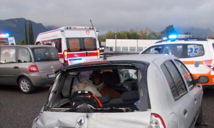 Incidente in Valassina, tre feriti: salvi per miracolo due cani LE FOTO