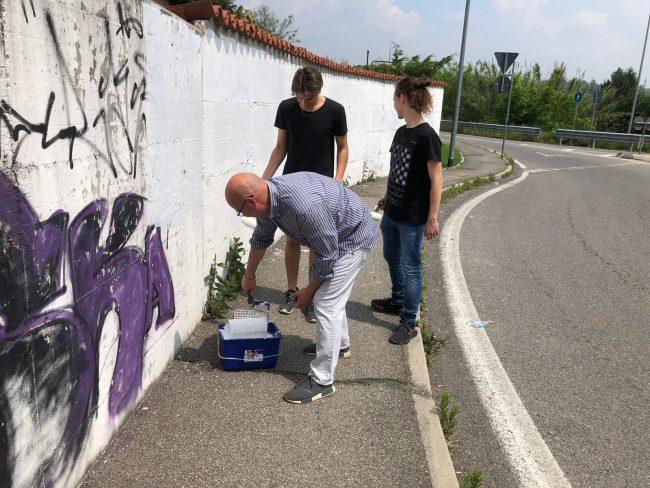 Besana, i ragazzi di Cazzaniga ripuliscono i muri imbrattati VIDEO