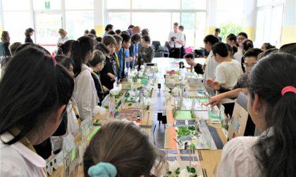 Bimbi architetti, la mostra degli alunni di Masih e Anzani