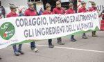Adunata Alpini Milano 2019 | Sfila l'orgoglio di Monza e Brianza VIDEO