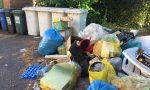 Oltre seicento multe per l'abbandono dei rifiuti