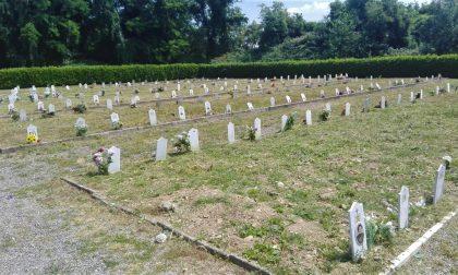 In cimitero tagliata l'erba alta dopo le proteste dei visitatori