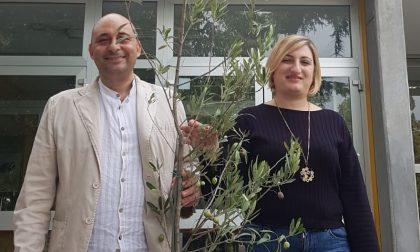 Una pianta per ogni scuola: il dono della Cisl per salvare il pianeta