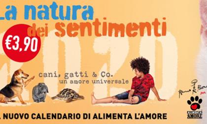 Coop Lombardia: ecco il nuovo calendario