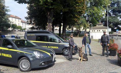 Guardia di Finanza Monza, controlli antidroga in città VIDEO