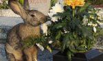 Al cimitero di Varedo spariscono i fiori ma non è colpa dei ladri