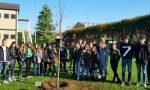 Un albero per Emanuele, studente morto in un incidente
