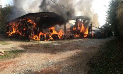 Incendio alla stalla del Castello, arrestata una donna di 61 anni