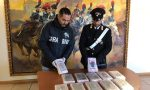 """""""Bianco Natale"""", sequestrati 12 chili di cocaina e 400mila euro VIDEO"""