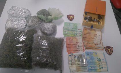 Pusher 19enne arrestato, in casa un piccolo market della droga FOTO