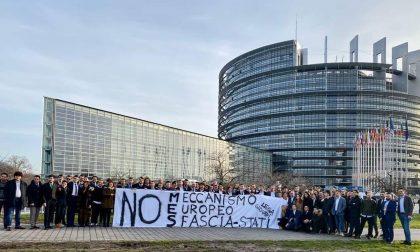 Lega Giovani al Parlamento europeo FOTO