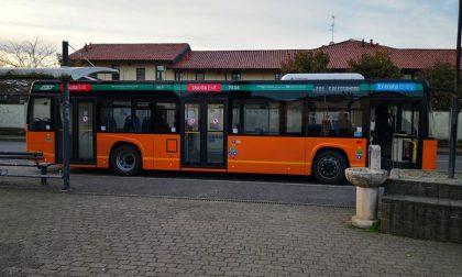 La polemica politica ieri ha preso l'autobus