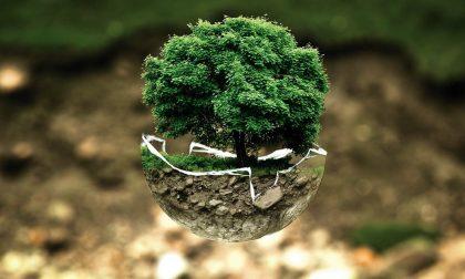 L'educazione ambientale di Gelsia diventa virtuale