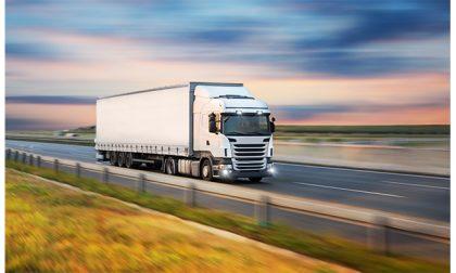 Servizi per aziende agroalimentari: come ottimizzare logistica, stoccaggio e trasporti dei prodotti