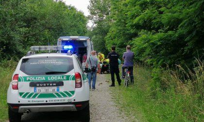Paura a Cavenago: 43enne cade da una pianta, arriva l'elisoccorso – VIDEO