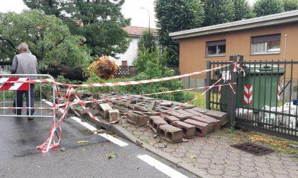 Maltempo, albero sfonda la recinzione dell'asilo nido FOTOGALLERY