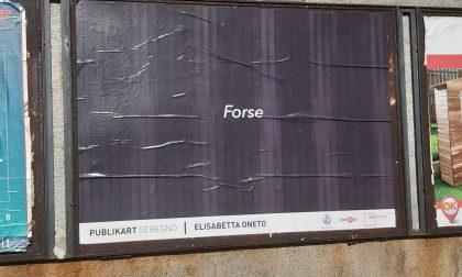 Ecco cosa sono quelle strane affissioni in città a Seregno FOTO