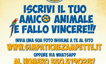 """Al via le Simpatiche Zampette, iscrivete i vostri """"amici animali"""""""