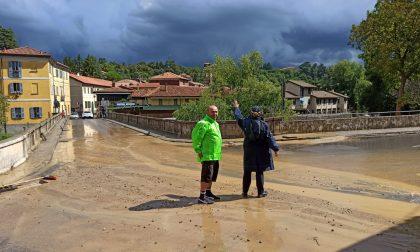 Temporale: un fiume di acqua e fango inonda (di nuovo) Agliate FOTO