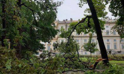 Monza devastata dal maltempo: Parco chiuso anche domani