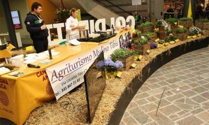 Agrinatura apre i battenti il prossimo 2 ottobre