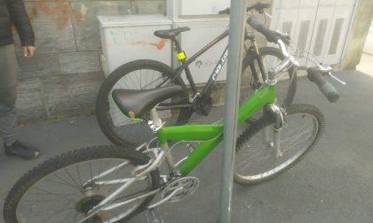 Denunciato il ricettatore seriale di bici rubate: è un 24enne di Monza LE FOTO