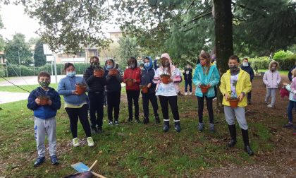 Vimercate, i giovani attivisti si mobilitano per i giardinetti