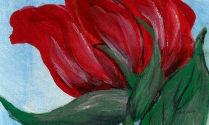 Una rosa d'autore per i donatori dell'Aido Giussano