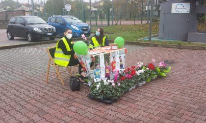 Croce Verde Brianza in piazza a sostegno della ricerca per la fibrosi cistica