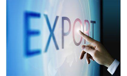 Import ed export al tempo della pandemia, una via di uscita possibile