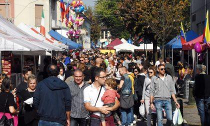 Dal 15 al 17 ottobre torna a Cesano il Mercato Europeo