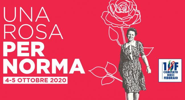 Una rosa pr Norma Cossetto