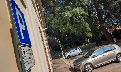 Covid, il Movimento 5 Stelle chiede la sospensione delle strisce blu