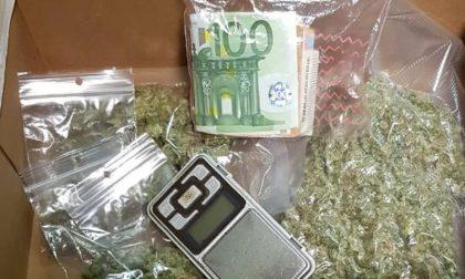 Seregno: 24enne trovato con marijuana e mille euro in contanti finisce nei guai