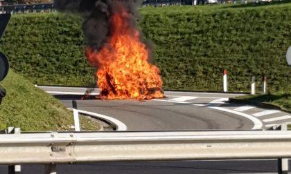 Auto in fiamme lungo la provinciale