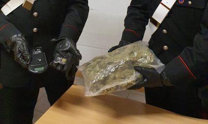 In auto con mezzo chilo di marijuana: arrestato un 22enne a Bovisio