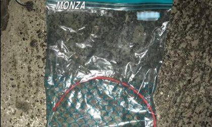 In casa scoperta droga e persino una bomba